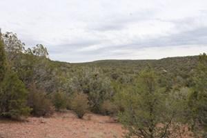 MOUNTAIN CAMPING/CABIN LAND FOR SALE NORTHERN AZ NO HOA
