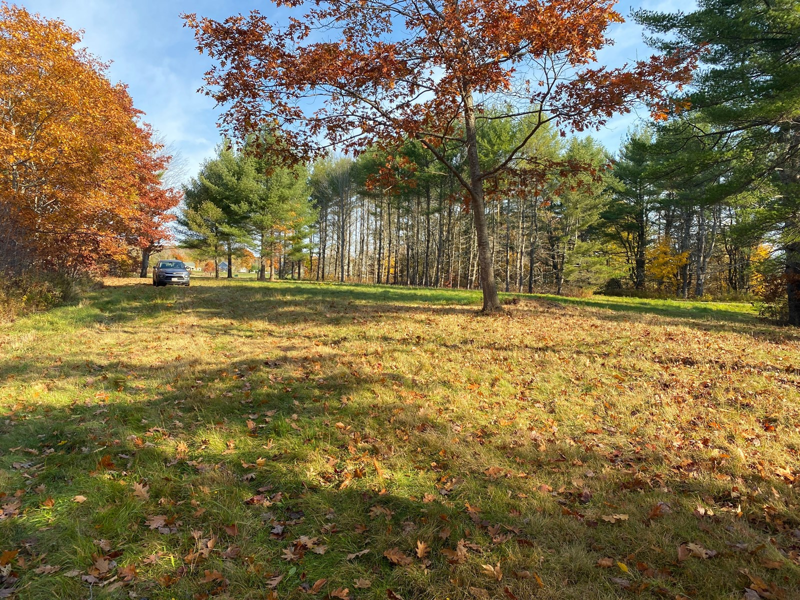 Private Maine Land For Sale