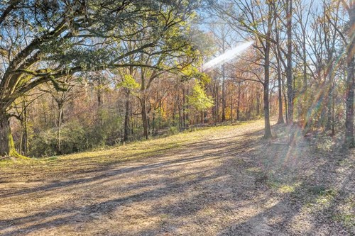 683 Acres Hardwood Hunting Land for Sale West Feliciana, LA