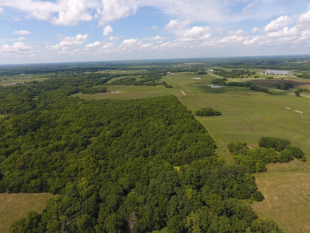 Tract 2, 80+/- Acres, Terraced Upland + Premier Hunting