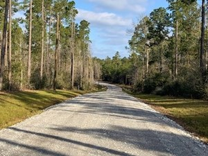 64 ACRES RESIDENTIAL DEVELOPMENT LAND FOR SALE LAMAR CO, MS