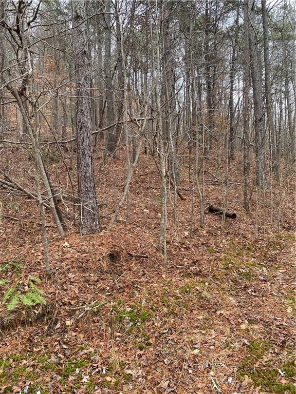 Mountain Property for Sale in Cherokee County
