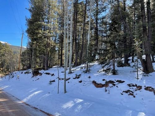 Mountain Property in Colorado