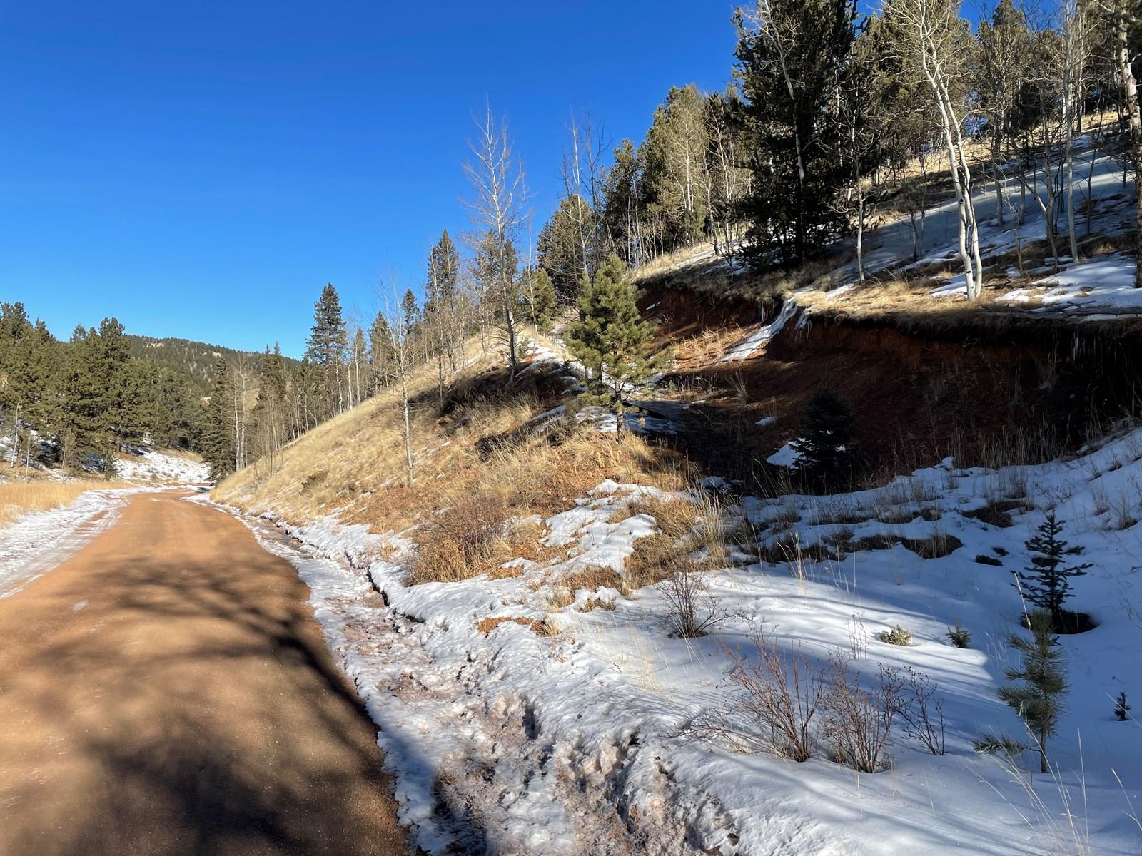 Colorado Mountain Property