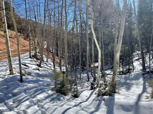 SECLUSION IN THE MOUNTAINS OF COLORADO