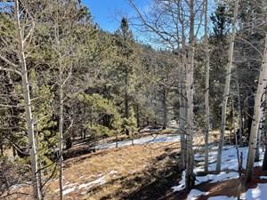 WONDERFUL MOUNTAIN PROPERTY IN COLORADO