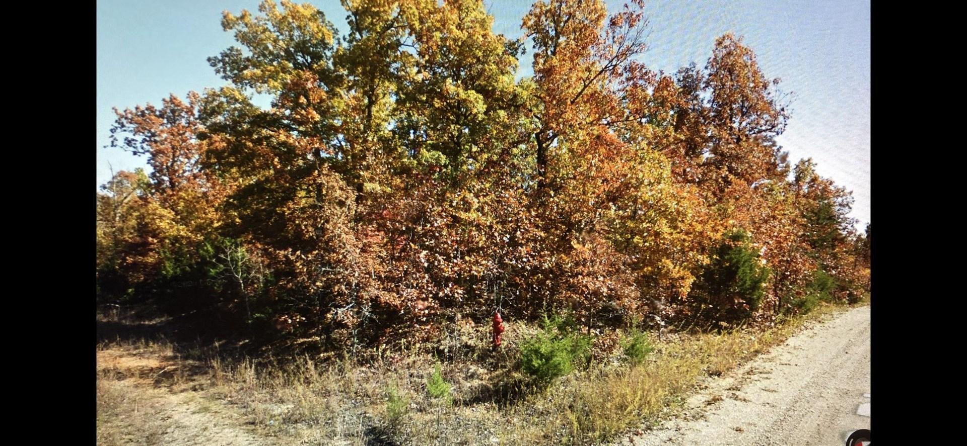 Land for sale in Horseshoe Bend, Arkansas
