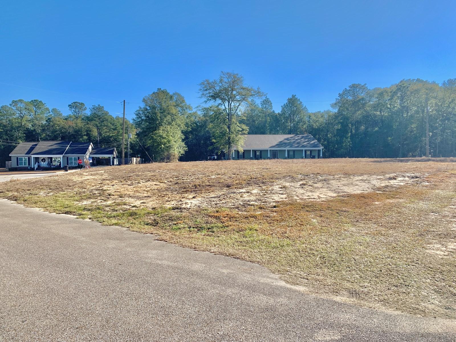 Land for sale in Geneva, Alabama