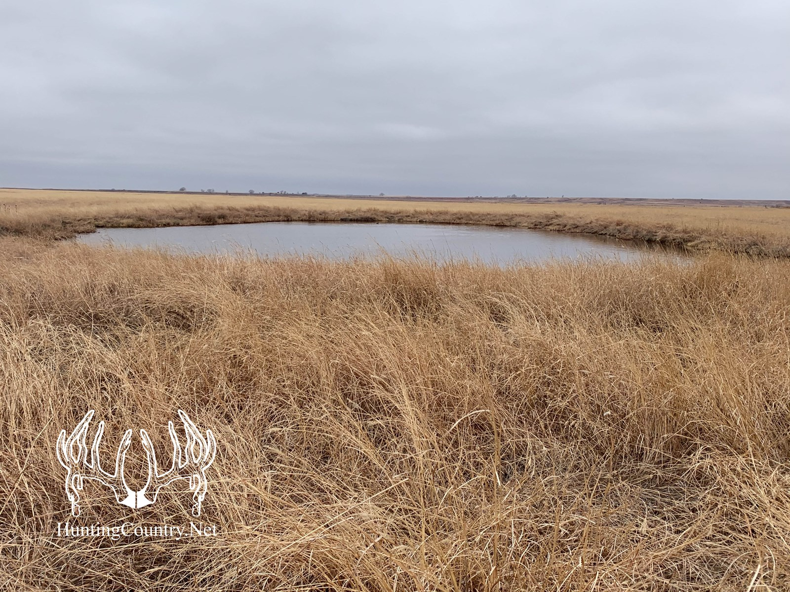 80 acres m/l. Woods County Oklahoma Land for Sale