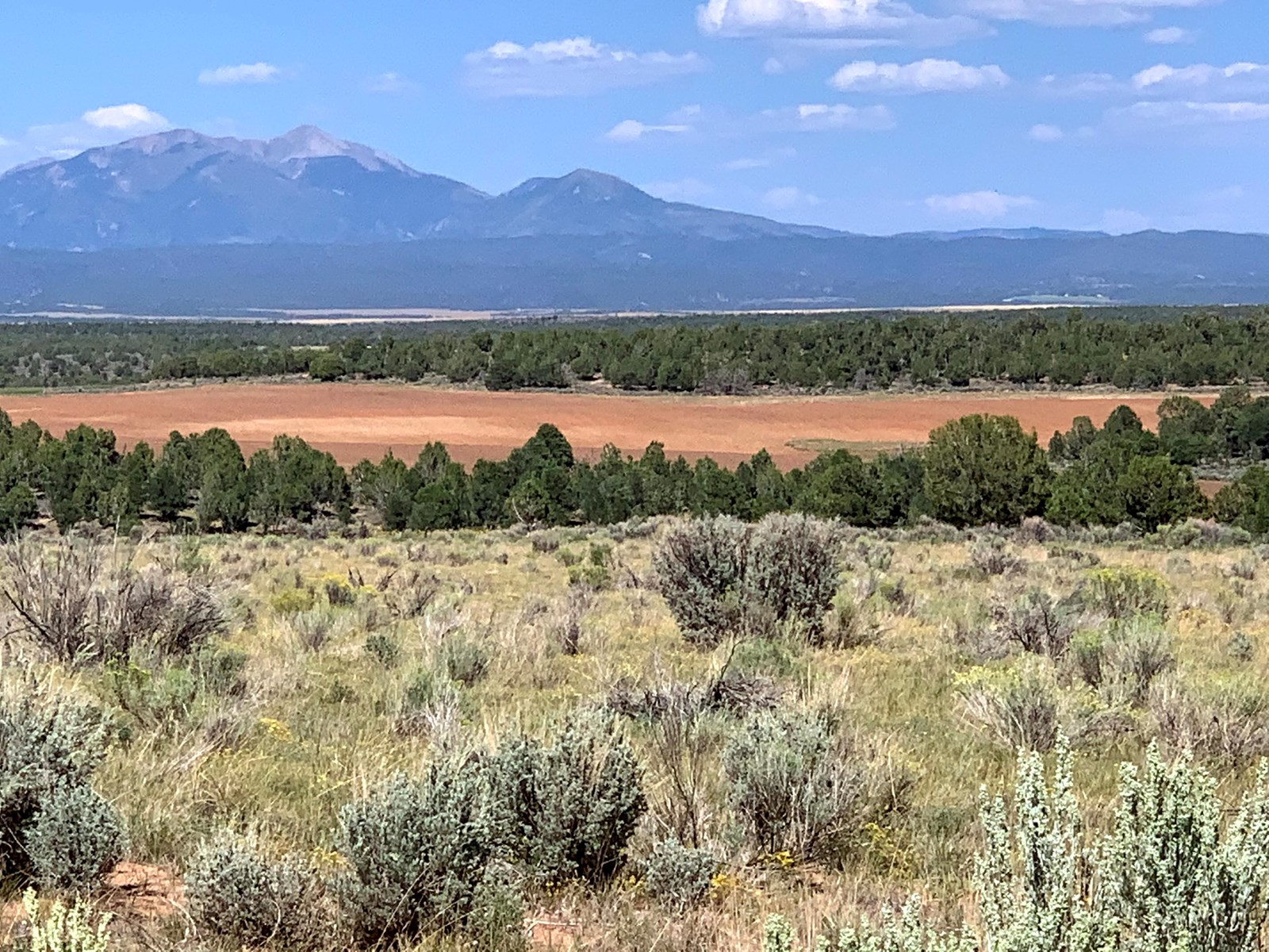 Quiet building site on 40 acres near Durango, Colorado