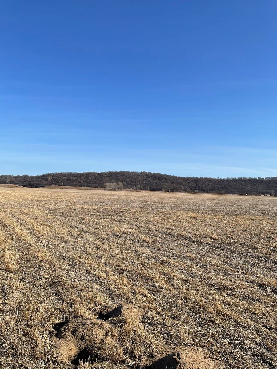 155+/- Acres MO River Bottom Row Crop Farm--Levee Protected
