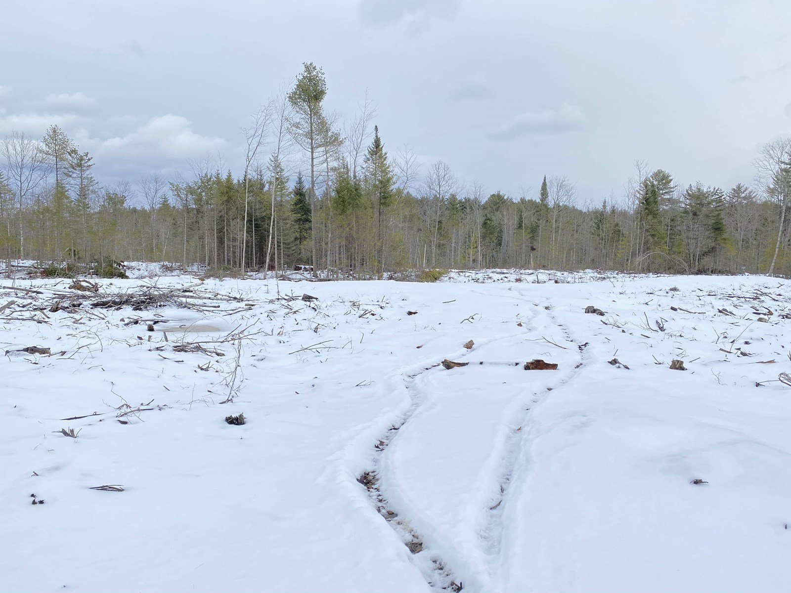Waterfront Land in Penobscot County