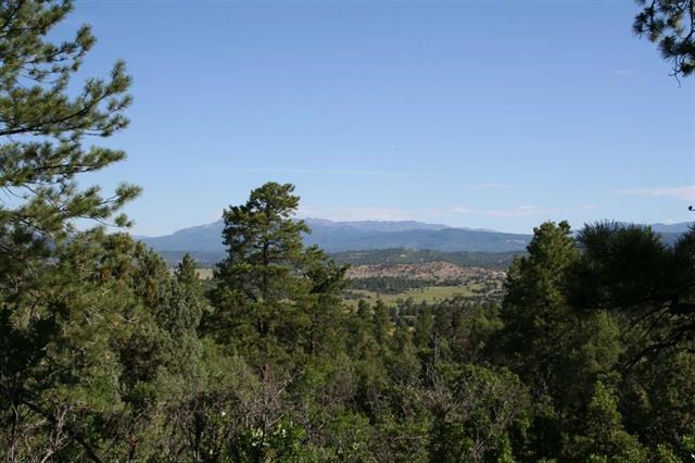 Mountain property with views of Colorado Mountain Peaks