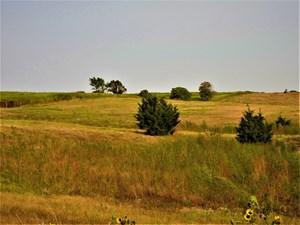 GOSPER COUNTY NEBRASKA  REFEREE LAND AUCTION