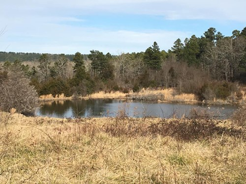 BUILD YOUR DREAM HOME HERE! BORDERS NATIONAL FOREST!