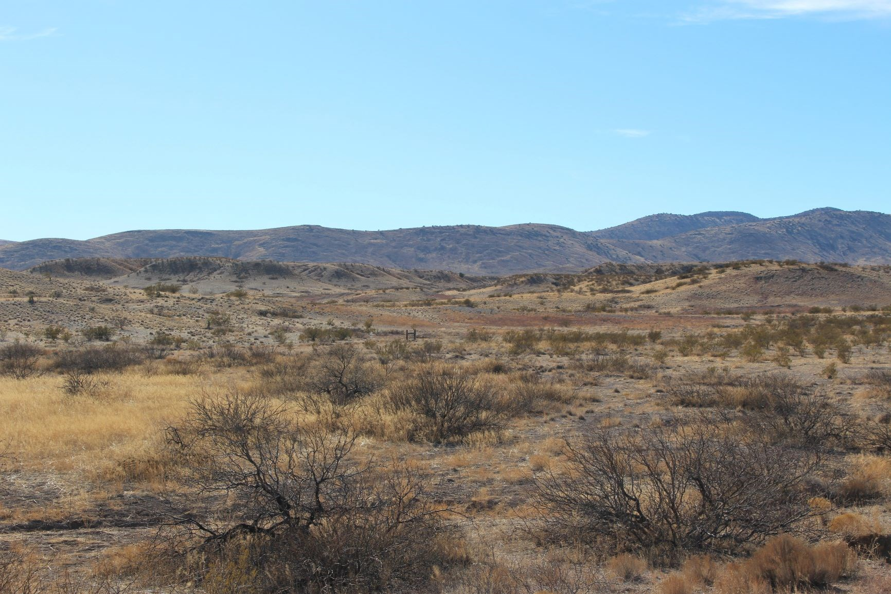 *PENDING* 36+/- Head Chico Ranch, Duncan, AZ ~ $450,000