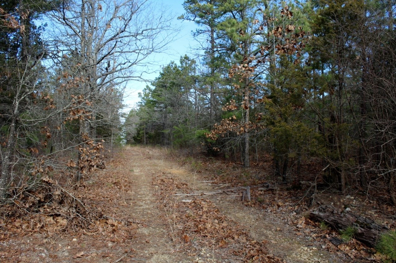 Wooded, Unrestricted,With Views Near Mountain View, Arkansas