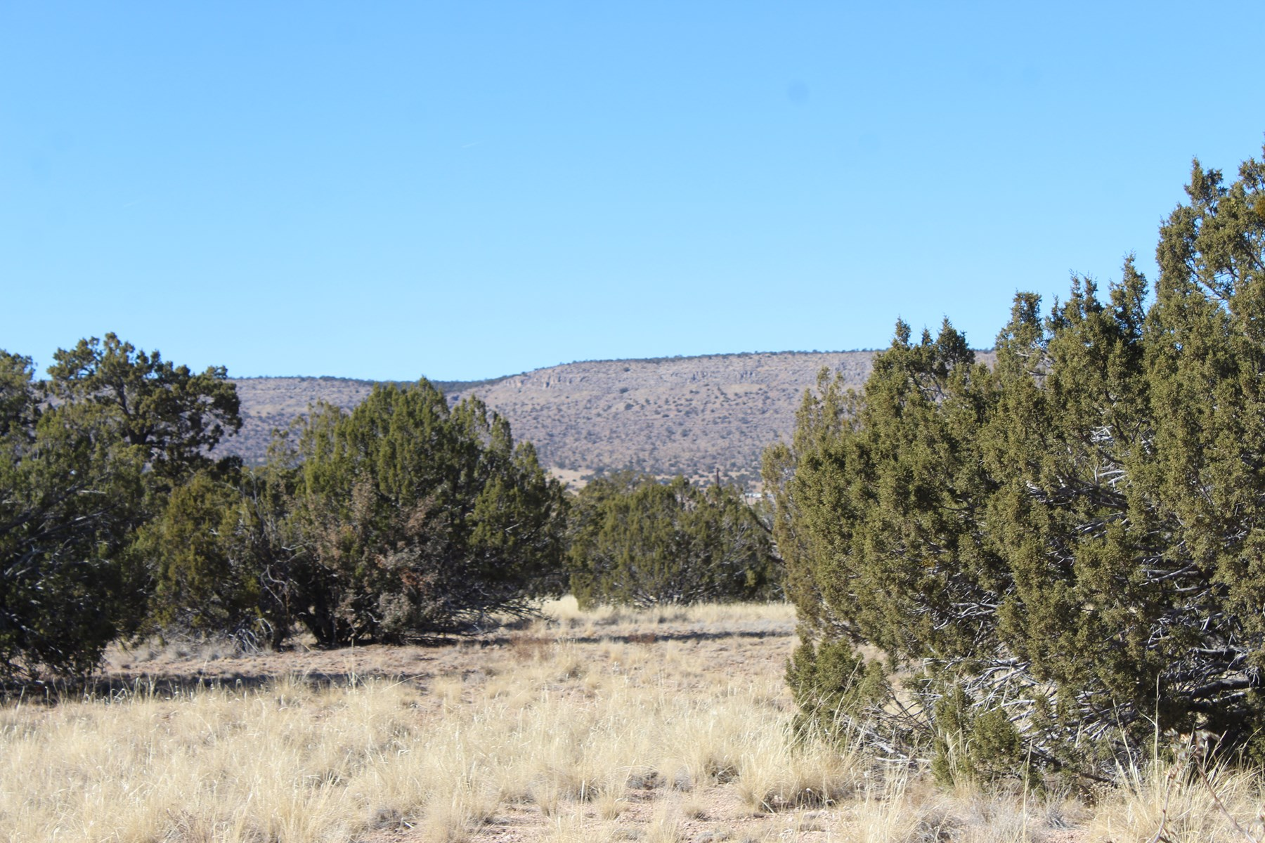 Building Site in Mountains of Seligman AZ