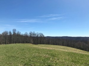 LAND FOR SALE WITH MOUNTAIN VIEWS IN PILOT VA!