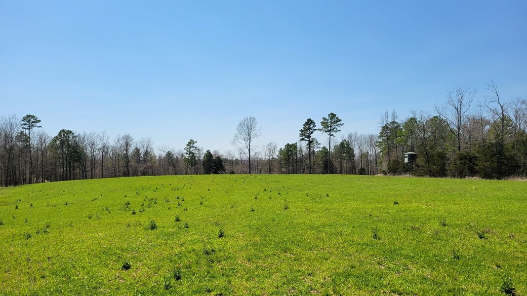 Hunting and Cattle Ground