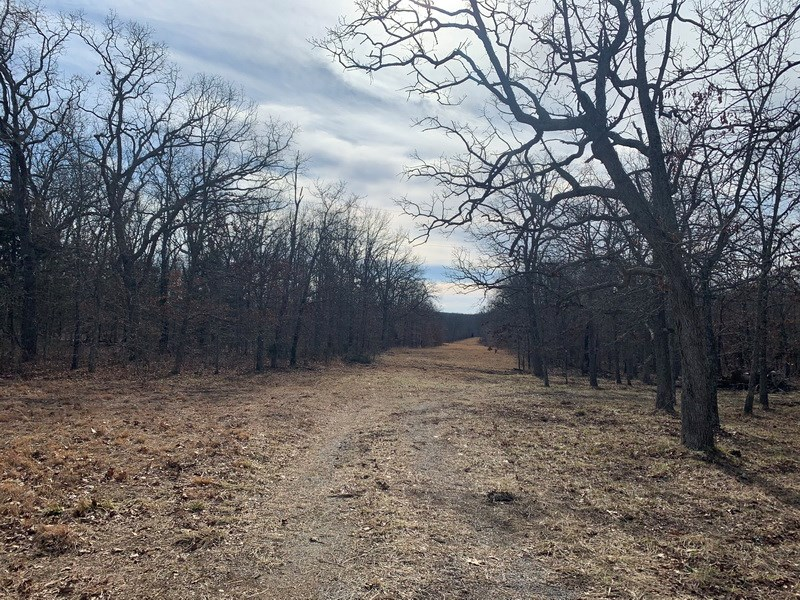 Small Recreational Tract For Sale in St. Clair County, MO