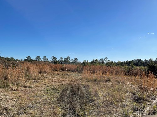 ACREAGE ADJACENT TO INDUSTRIAL PARK, LAKE CITY, FLORIDA