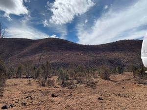 MOUNTAIN LAND IN HUNTING AREA FOR SALE