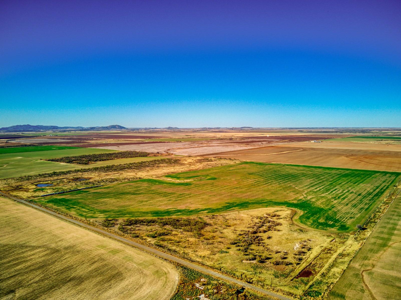 ±160 Acres, Kiowa County, OK - Hunting & Cropland for Sale