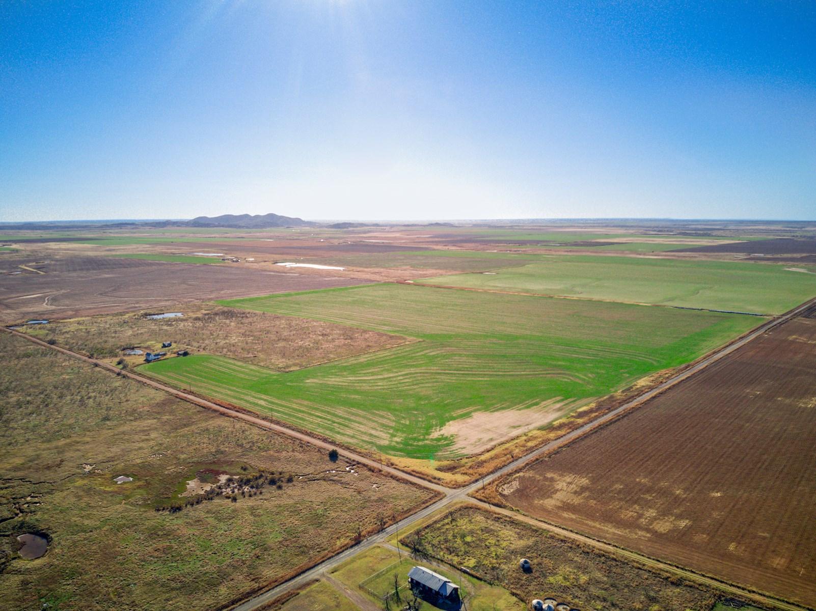 ±160 Acres, Kiowa County, OK  Cropland and Native for Sale