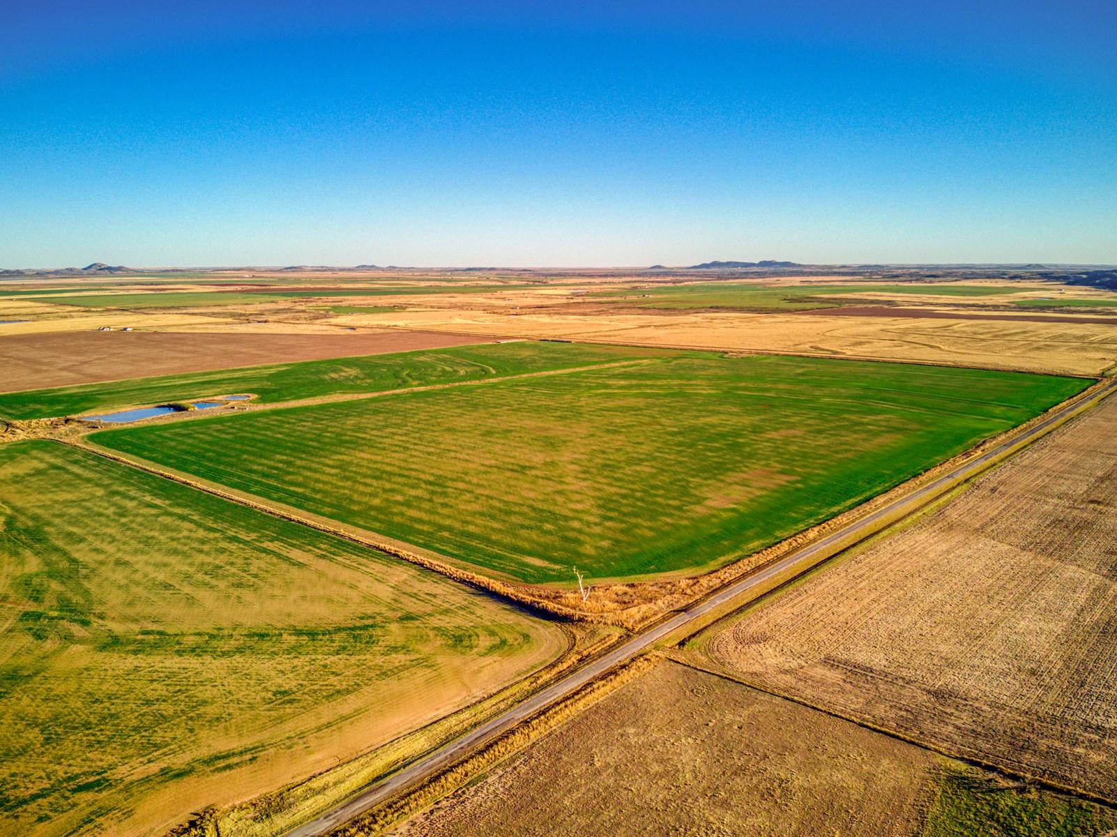 ±160Acres, Kiowa County, OK Cropland for Sale