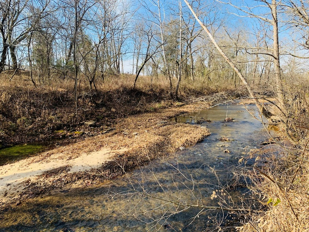 LAND IN THE OZARKS FOR SALE
