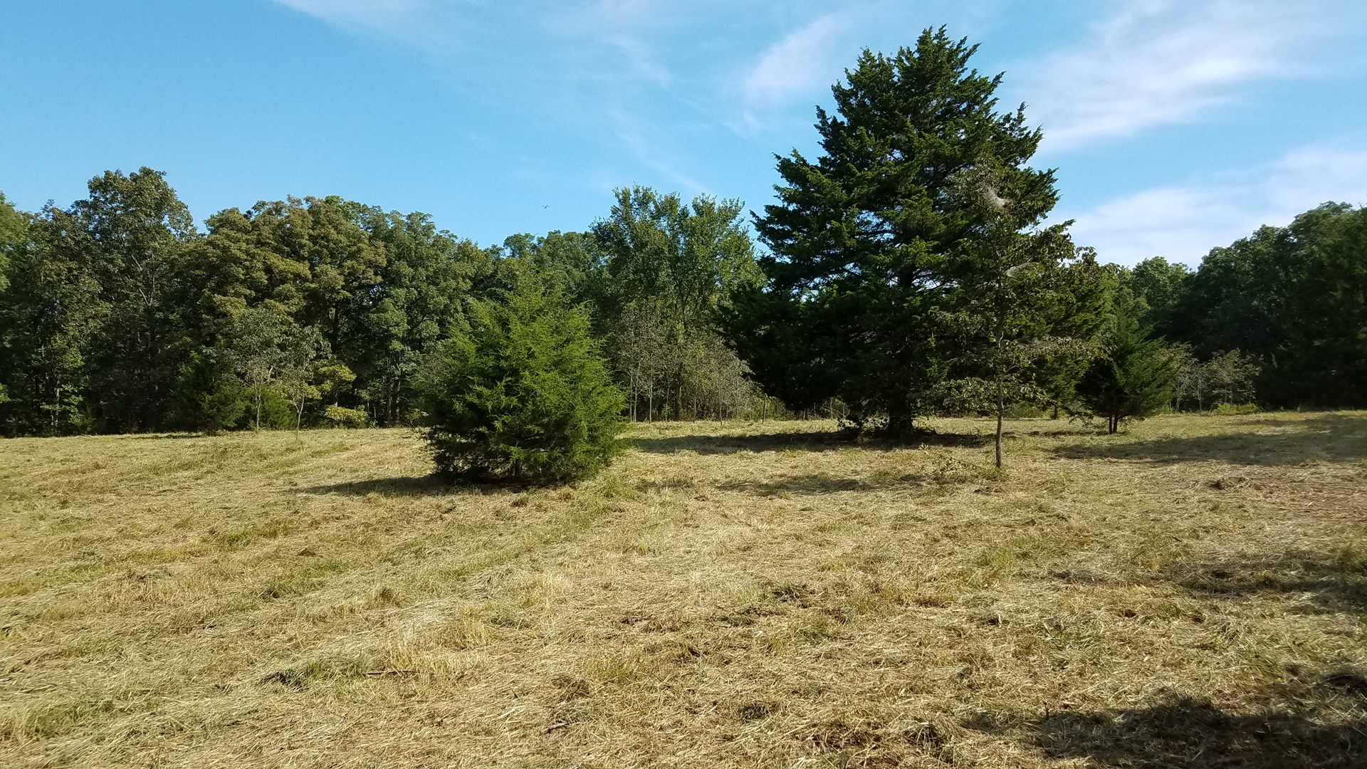 Land For Sale! 7+/- Acres Vacant Land With Pond!