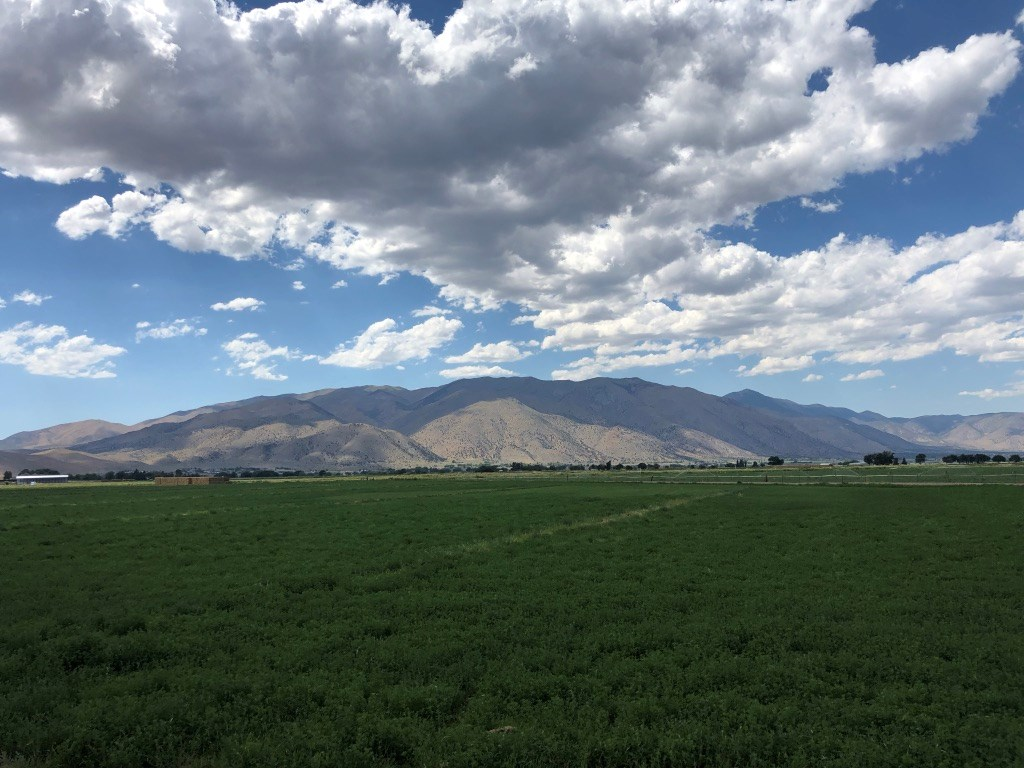 Tax Free Nevada Hay Ranch Farm Horse Property For Sale