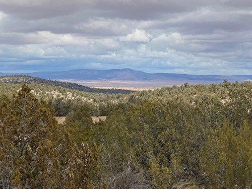 Hunting and Camping Land for sale Northern Arizona