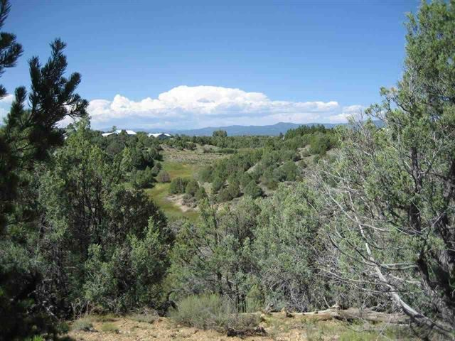 Great Mountain, River & Meadow Views Secluded