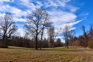 PERRY COUNTY HUNTING, RECREATION LAND, HOMESITE, NEAR RIVER