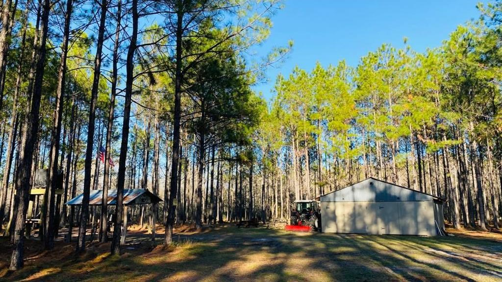 ESCAPE TO THE COUNTRY IN LEVY COUNTY FLORIDA!