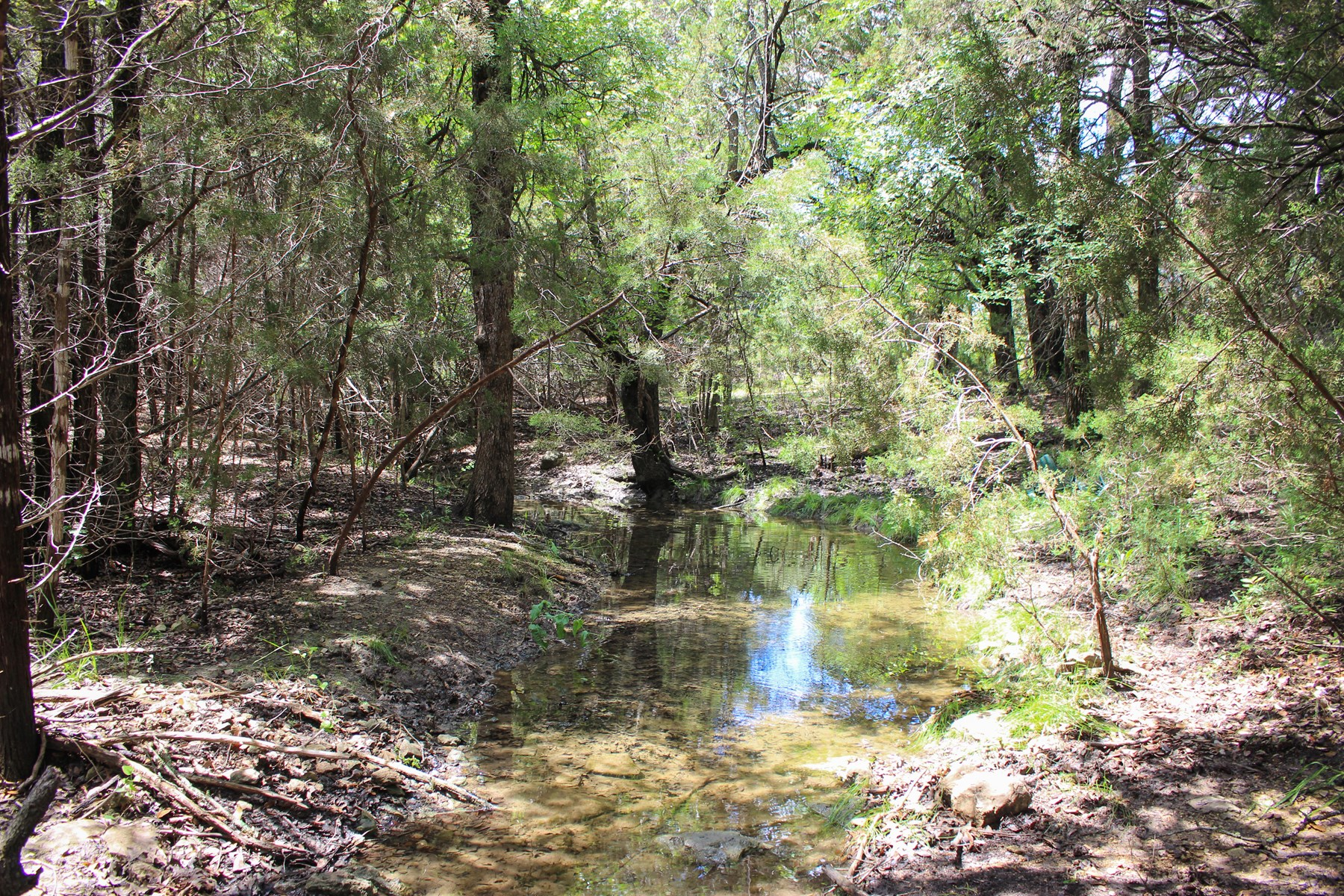 Land for Sale in Central Texas - 215 Acres in Coryell County