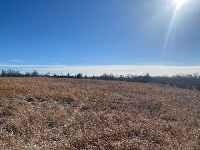 DEKALB COUNTY CRP & HUNTING ACREAGE FOR SALE