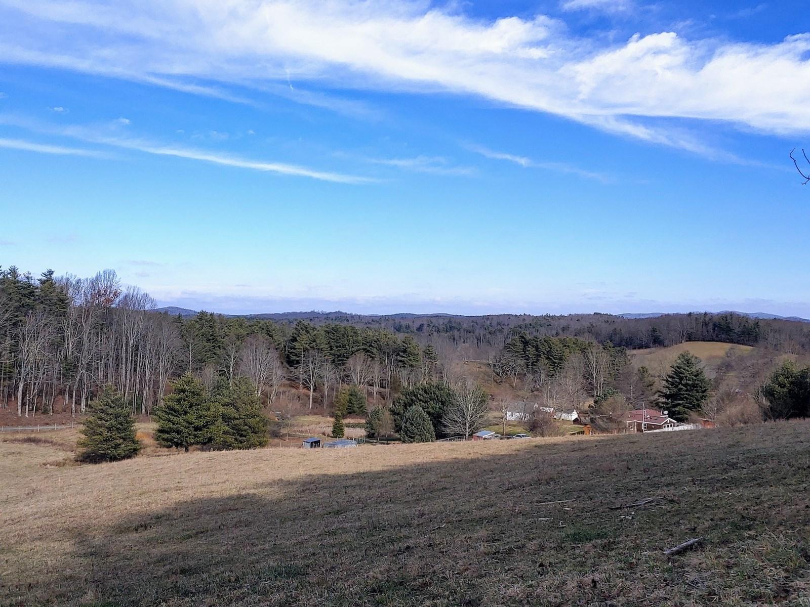 Building Land for Sale in Willis VA!