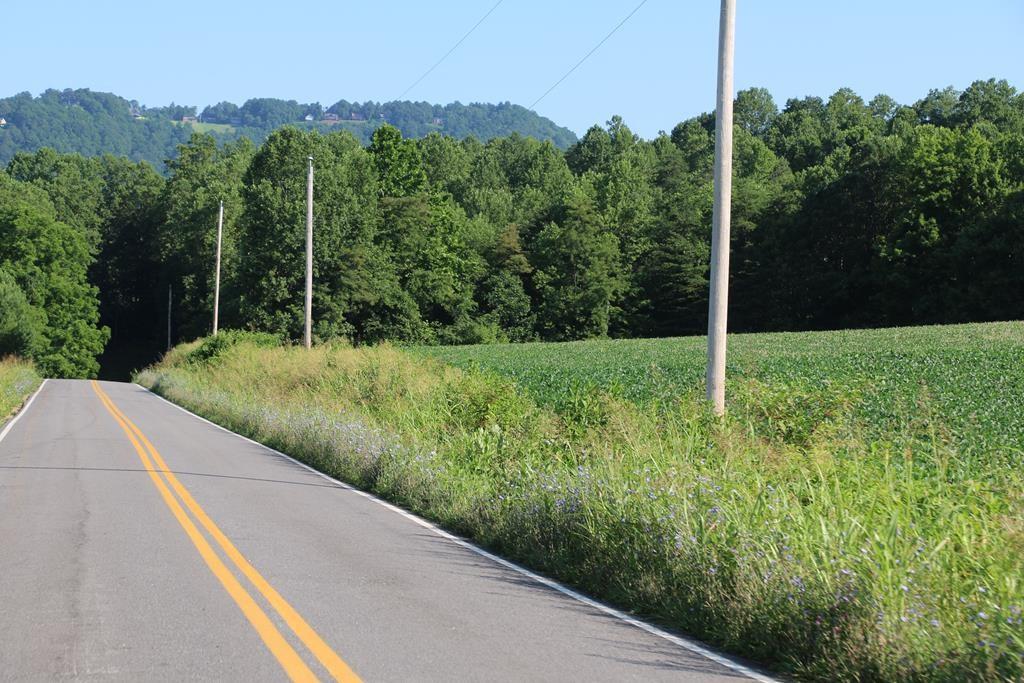 Land For Sale Lambsburg Virginia 24351