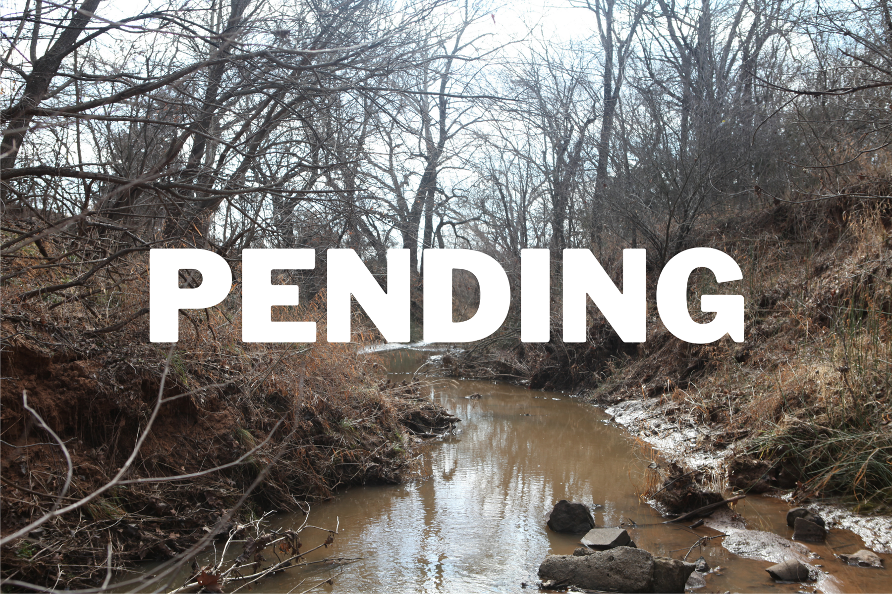 Pasture Property with New Pond, Creek, and Great Hunting