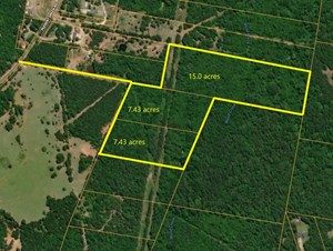 EAST TEXAS LAND FOR SALE HUNTING LAND BUILDING BUILDING SITE