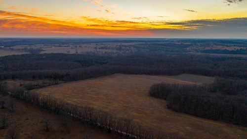 110 Acre Prime Hunting Property, Stockton, MO
