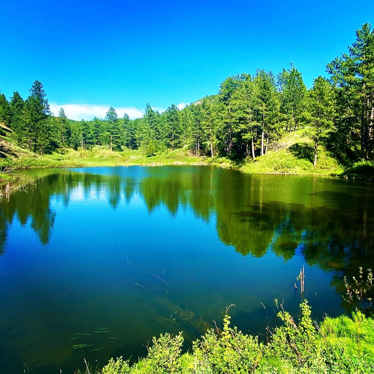 Little Rocky Mountains Acreage/Lot #23 For Sale Landusky, MT