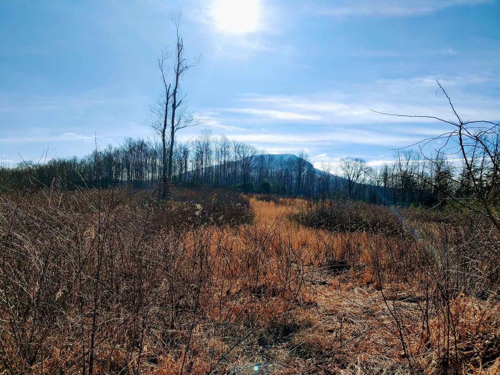 Recreational Retreat for Sale in Willis VA!