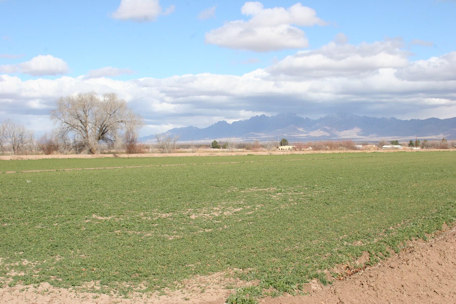 South Valley Farm Land