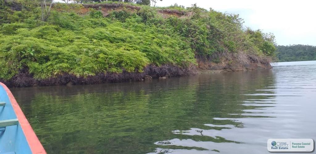 37.6 HECTARES FOR SALE IN POPA ISLAND BOCAS DEL TORO PANAMA3