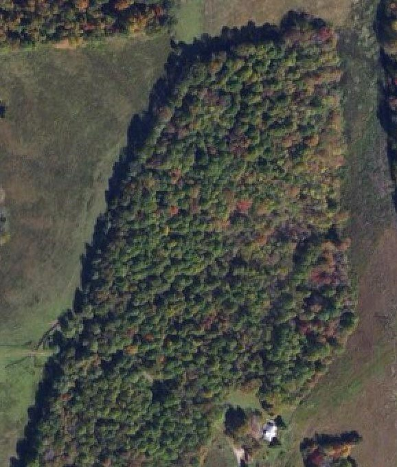 Land for Sale in Edmonton, KY - Metcalfe County