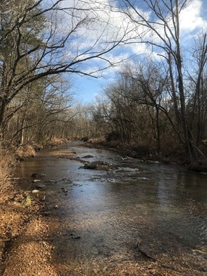 LAND IN ARKANSAS FOR SALE, WOODS, TIMBERLAND, 324 ACRES ML